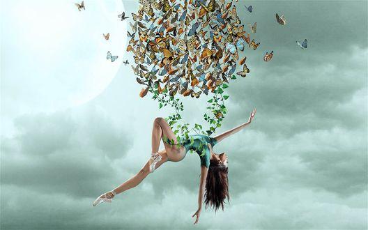 Обои Воздушная гимнастка на тонкой ветке в небе, стайка бабочек над ней, на фоне облаков и солнца