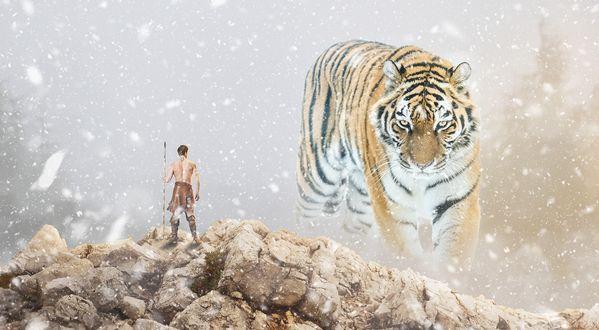 Обои Охотник с копьем стоит на вершине горы на заднем плане, всматриваясь вдаль, а на переднем плане идет тигр, падает снег