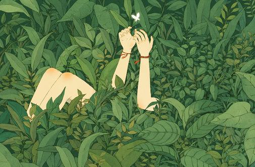 Обои Девушка лежит в зеленой траве и над руками порхает бабочка