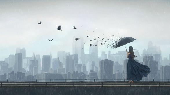 Обои Девушка с зонтом, с разлетающимися птицами, стоит под дождем