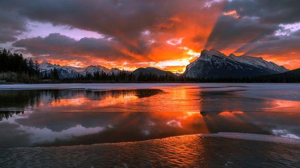 Обои Небольшое озеро у леса и гор, Альберта, Канада