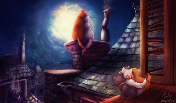 Обои Коты сидят на крыше и на трубе, by glimpen
