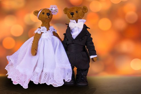 Обои Парочка плюшевых мишек в образах жениха и невесты, боке фон