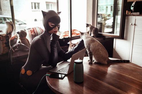 Обои Косплей Catwoman / Женщина-кошка, by Kamiko-Zero