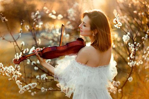 Обои Девушка играет на скрипке на фоне цветущих веток в лучах солнца, Фотограф Ольга Бойко