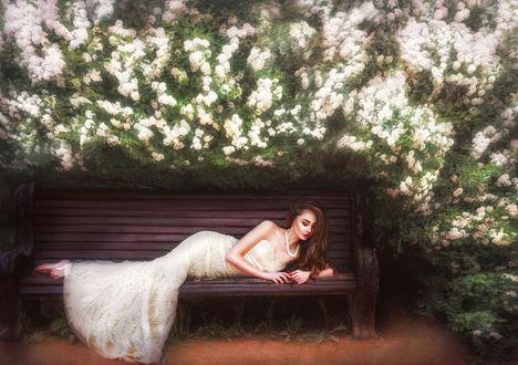 Обои Девушка в длинном кремовом платье лежит на деревянном диване под цветущими ветками, by Ilona