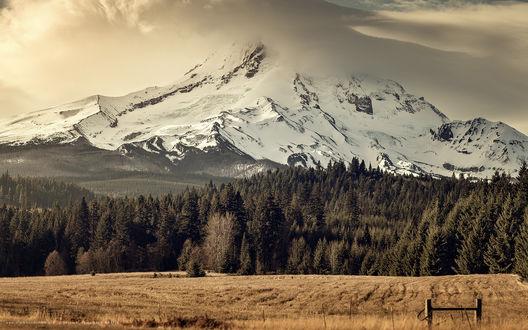 Обои Лавочка на поляне возле леса и заснеженной горы