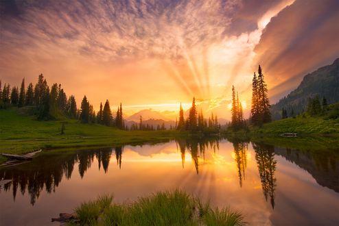 Обои Mount Rainier National Park / Маунт-Рейнир в Национальном парке США, фотограф Quan Yuan