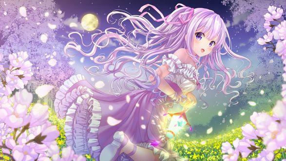 Обои Девочка с фонариком среди цветов