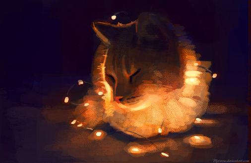 Обои Кошка в гирляндах, by Meorow