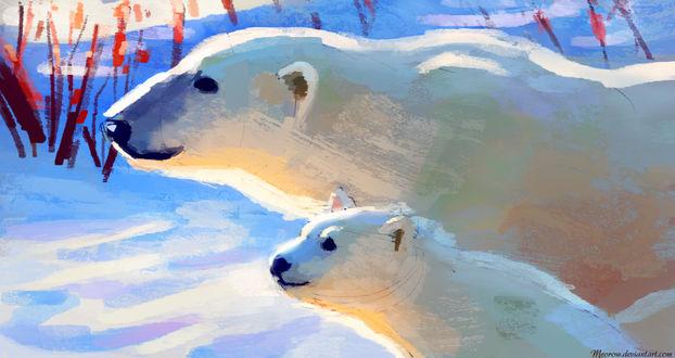 Обои Два белых медведя на фоне снега, by Meorow