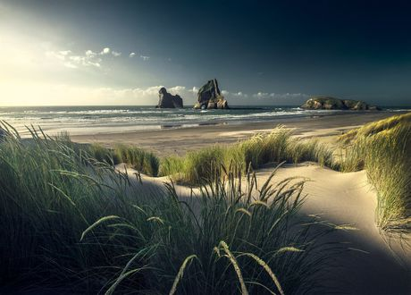 Обои На пляже, New Zealand / Новая Зеландия, фотограф Max Rive