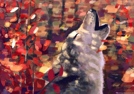 Обои Воющий волк на фоне красных листьев, by Meorow