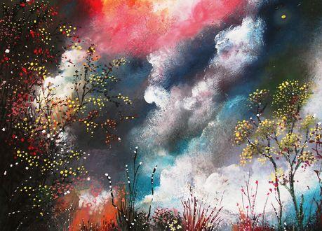 Обои Деревья под цветными облаками, by milenkadelic