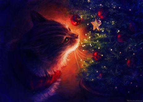 Обои Кошечка возле елки с игрушками, by Meorow