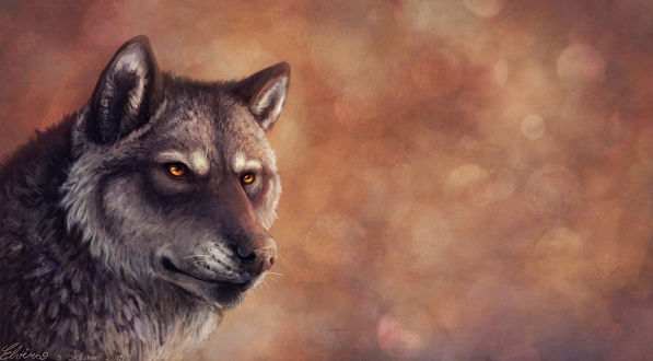 Обои Портрет волка на фоне дыма, by Neovirah
