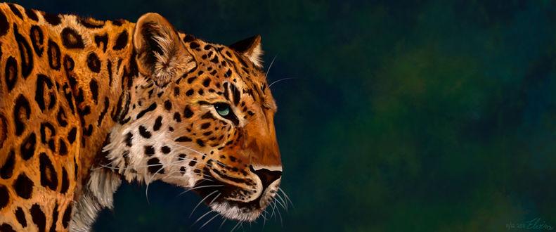 Обои Портрет леопарда, by Neovirah
