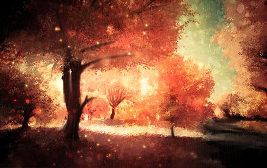 Обои Осенние деревья, автор Akyuun