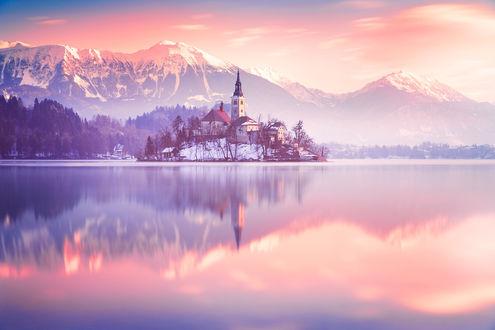 Обои Остров Блед, Словения, церковь и замок на острове