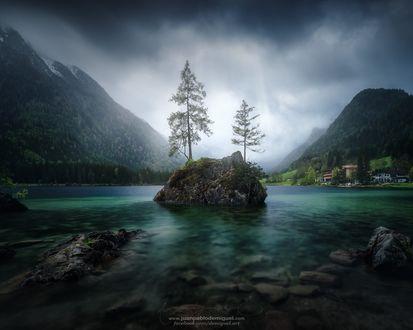 Обои Два дерева на небольшом островке посреди голубого озера, фотограф Juan Pablo de Miguel