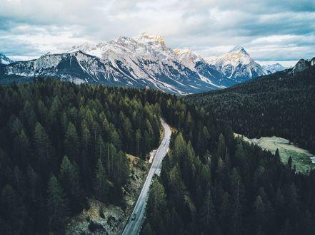 Обои Дорога через лес в горы, фотограф Daniel Casson