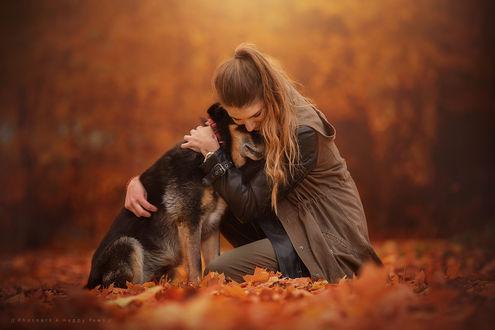 Обои Девушка обнимает собаку на осеннем фоне природы, by Anne Geier