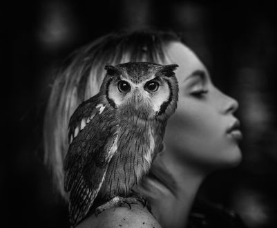 Обои Девушка с совой на плече, фотограф Joachim Bergaue