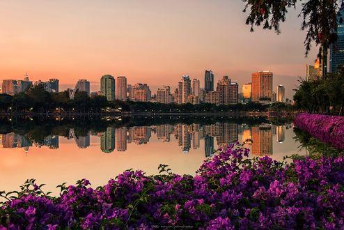 Обои Парк в Бангкоке, фотограф Manjik photography