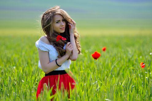 Обои Девушка в красной юбке и белой футболке на поляне с цветком мака в руке