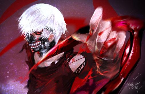 Обои Канеки Кен / Kaneki Ken из аниме Tokyo Ghoul / Токийский Гуль, by Goditsuka