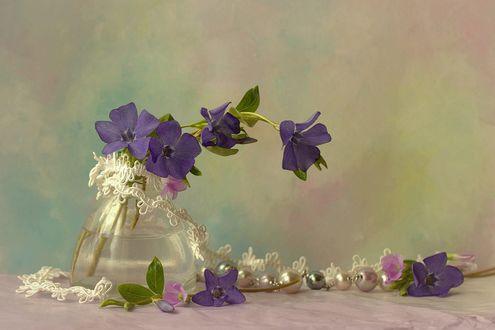 Обои Сиреневые колокольчики в вазе, фотограф Sonata Zemgulienе