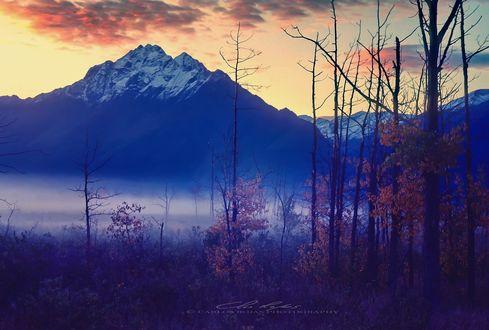 Обои Горы окружены утренним туманом, фотограф Carlos Rojas
