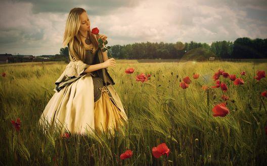 Обои Девушка длинном платье с розой в руках стоит в поле среди маков