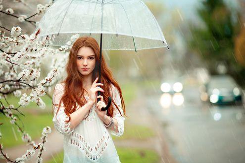 Обои Девушка с зонтом стоит под дождем, by OlgaBoyko