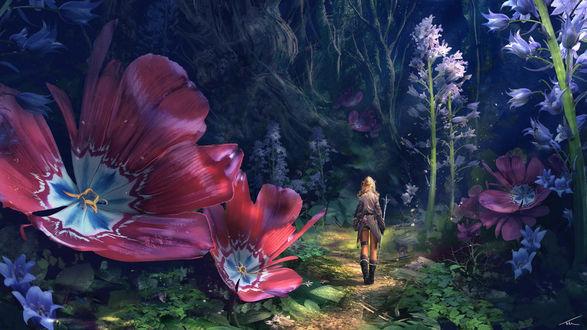 Обои Девушка с посохом стоит на тропинке в сказочном лесу среди огромных цветов