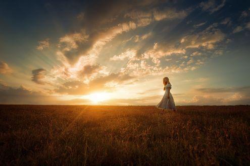 Обои Девушка идет по полю на фоне заката, фотограф TJ Drysdale