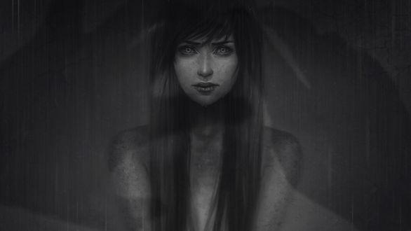 Обои Портрет девушки на темном фоне, by Zolaida