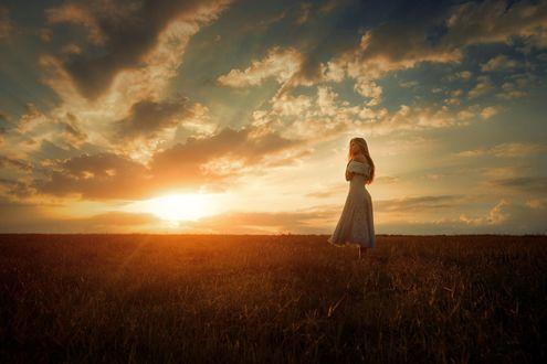 Обои Девушка стоит в поле на фоне заката, фотограф TJ Drysdale