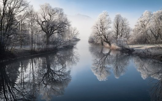 Обои Заснеженные деревья по обе стороны реки и их отражение в реке