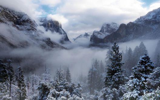 Обои Зима в национальном парке Йосемити, США