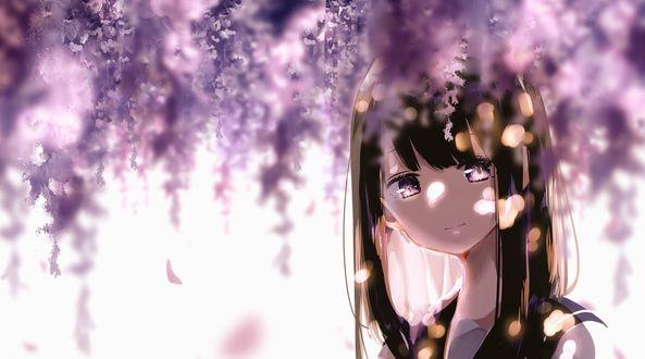 Обои Девушка стоит под цветущей глицинией