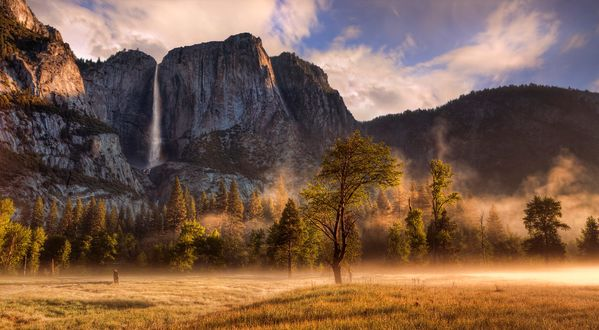 Обои Утренний туман в долине парка Йосемити (автор Mark Lissick)