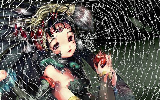 Обои Девочка-паук за паутиной в каплях воды
