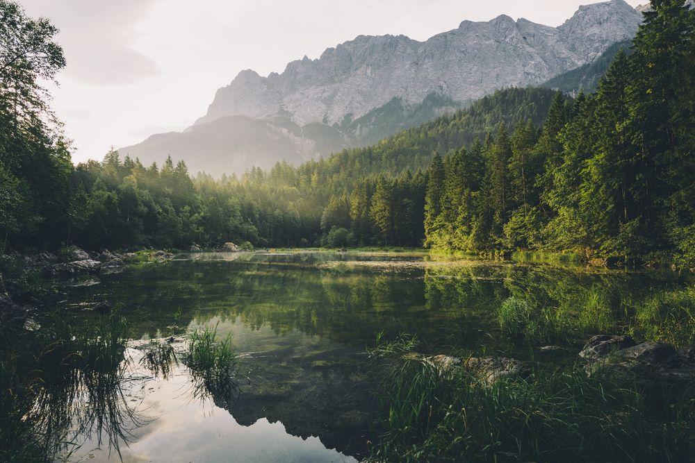 Обои для рабочего стола Небольшое озеро возле леса, Германия, фотограф Merlin Kafka