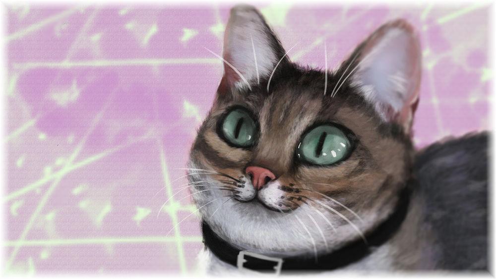 Обои для рабочего стола Портрет серо-белой кошки с зелеными глазами, by onionrider