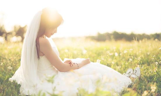 Обои Невеста, освещаемая лучами солнца, сидит в траве среди ромашек