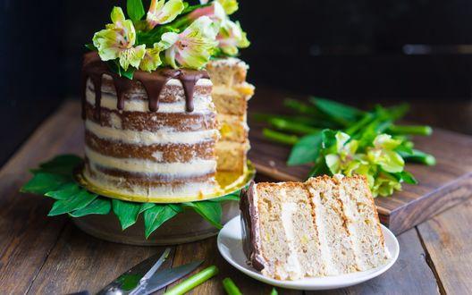 Обои Разрезанный многослойный торт с кремом, украшенный свежими цветами