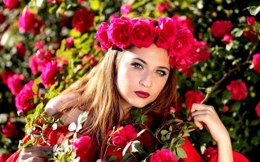 Обои Светловолосая девушка в венке из красных цветов спряталась среди красных цветов