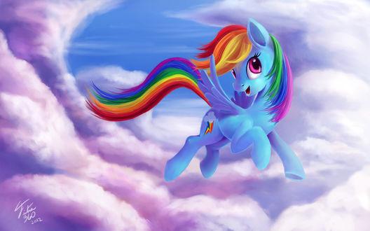 Обои Rainbow Dash / Радуга Дэш из мультсериала Мой маленький пони: Дружба – это чудо / My Little Pony: Friendship is Magic / MLP:FiM, by Tsitra360