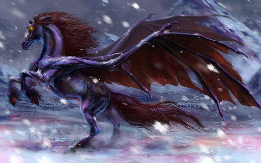Обои Конь-демон с крыльями под падающим снегом